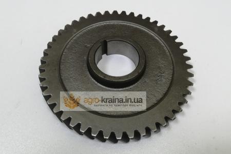 Шестерня привода масляного насоса МТЗ Д-240 (старого образца) 50-1005033